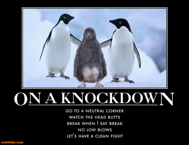on-a-knockdown-boxing-referee-demotivational-posters-1299183162 (1)